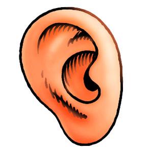 Auditorix - Hören mit Qualität: Wie können wir hören